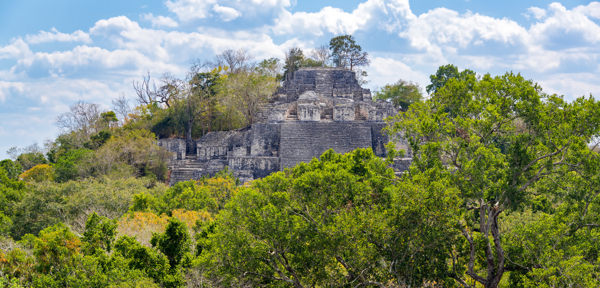 Die besten Maya Ruinen in Mexiko: Calakmul