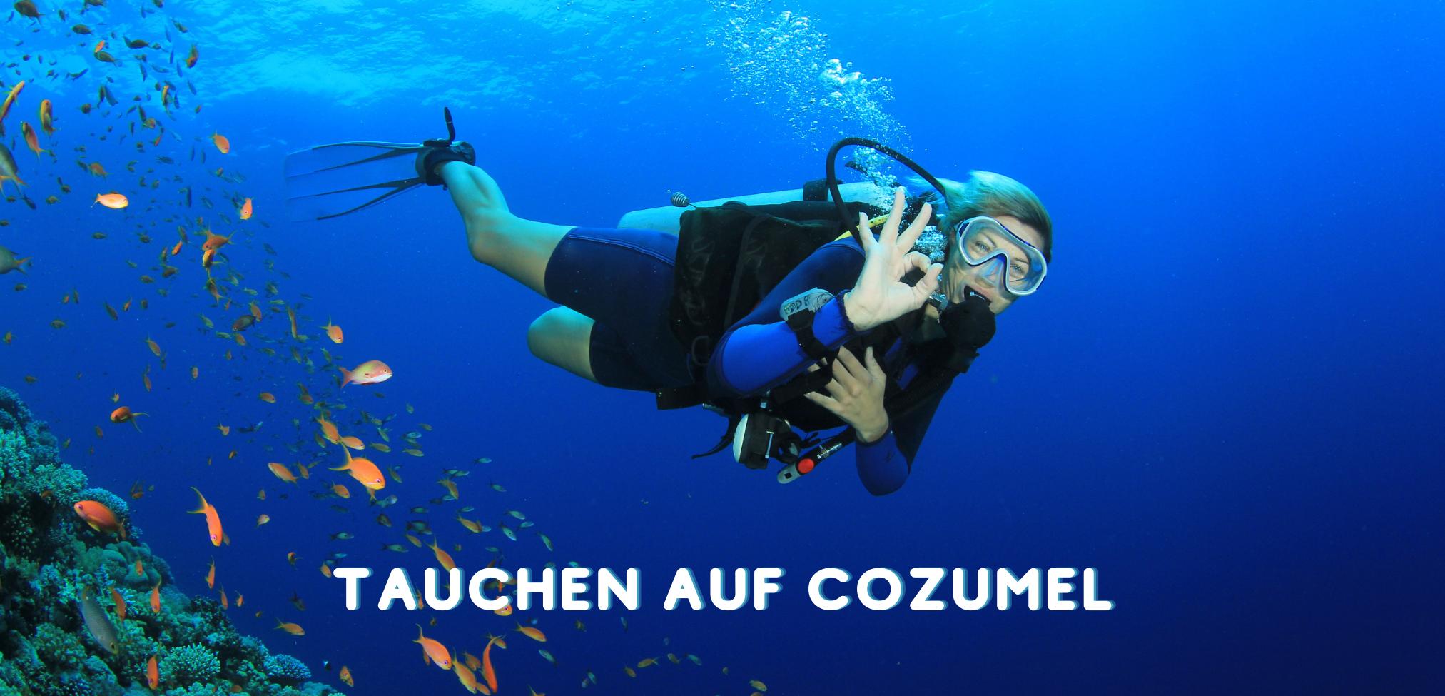 Yucatan Halbinsel: Cozumel