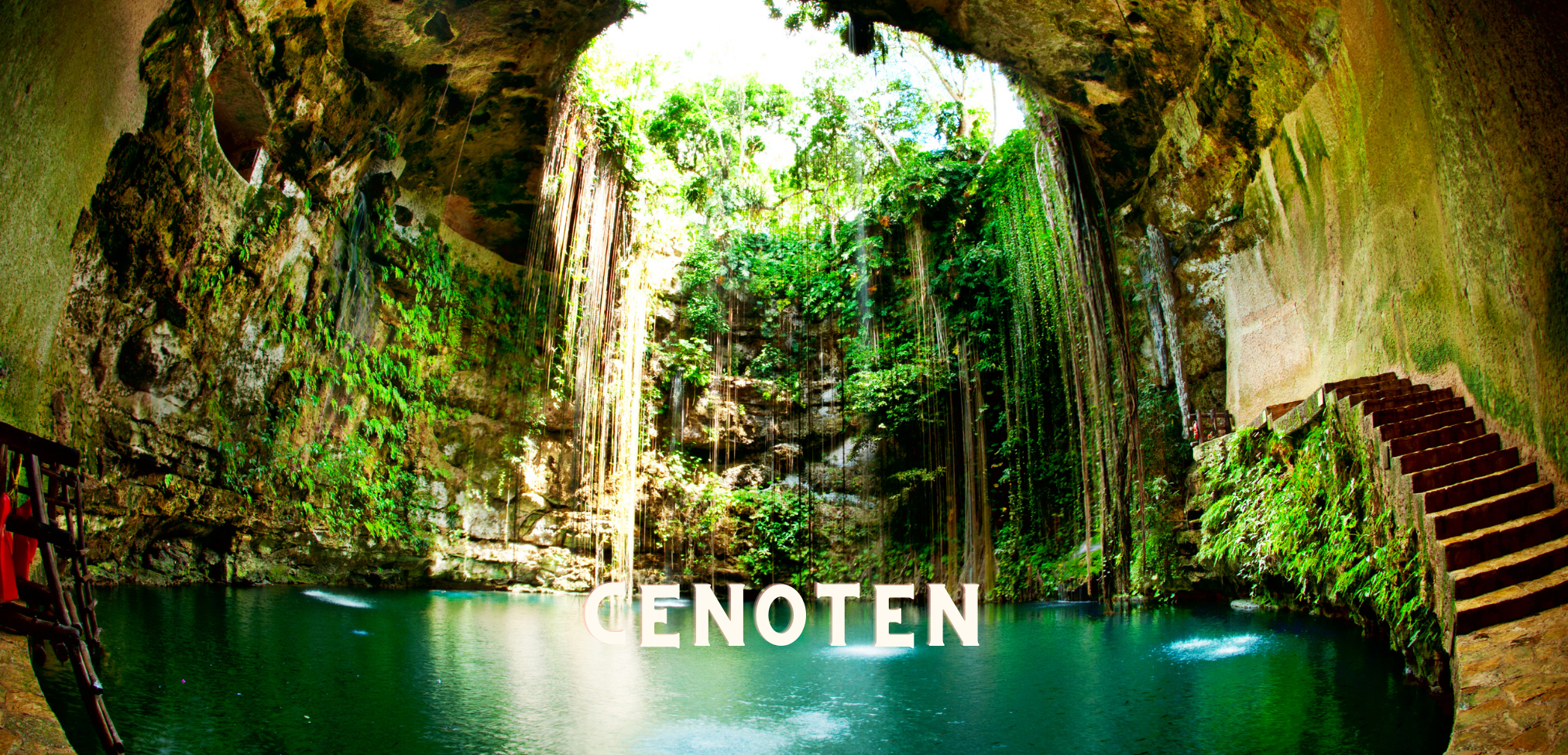 Die besten Highlights Mexiko Höhepunkte Cenoten