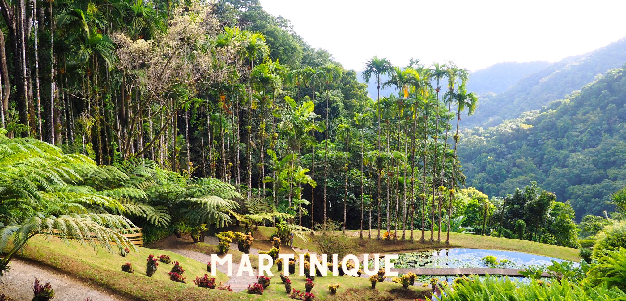 Karibik Reiseziele Martinique